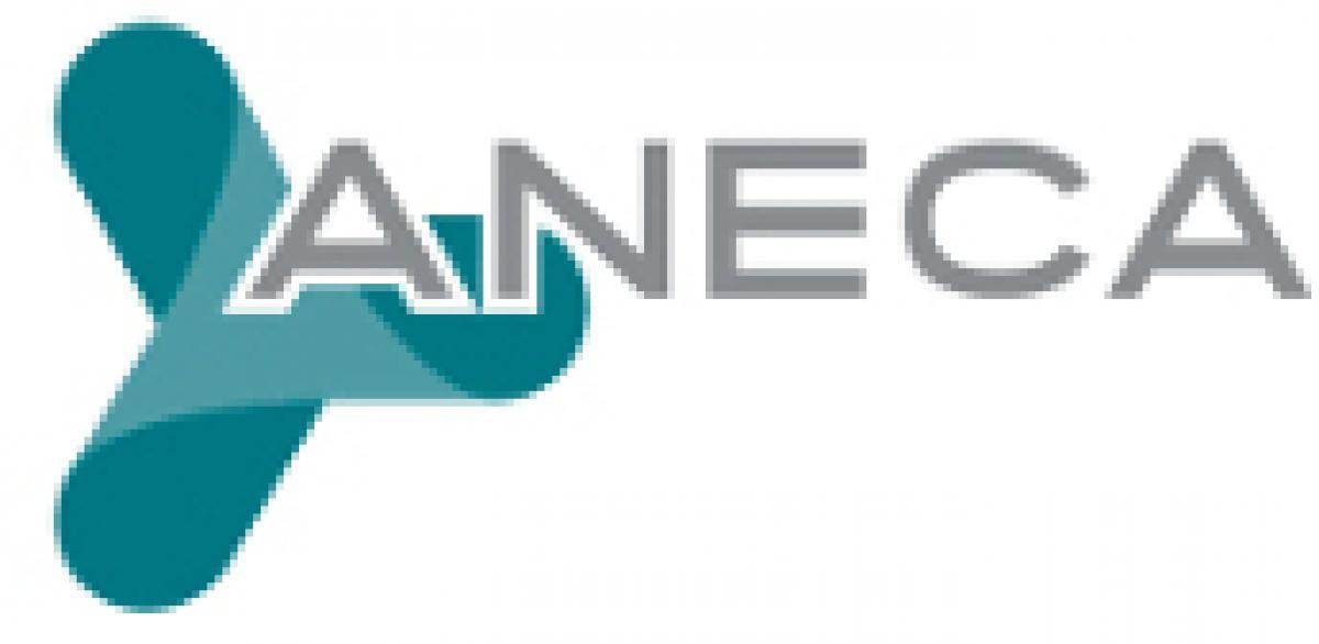 Logo Aneca.