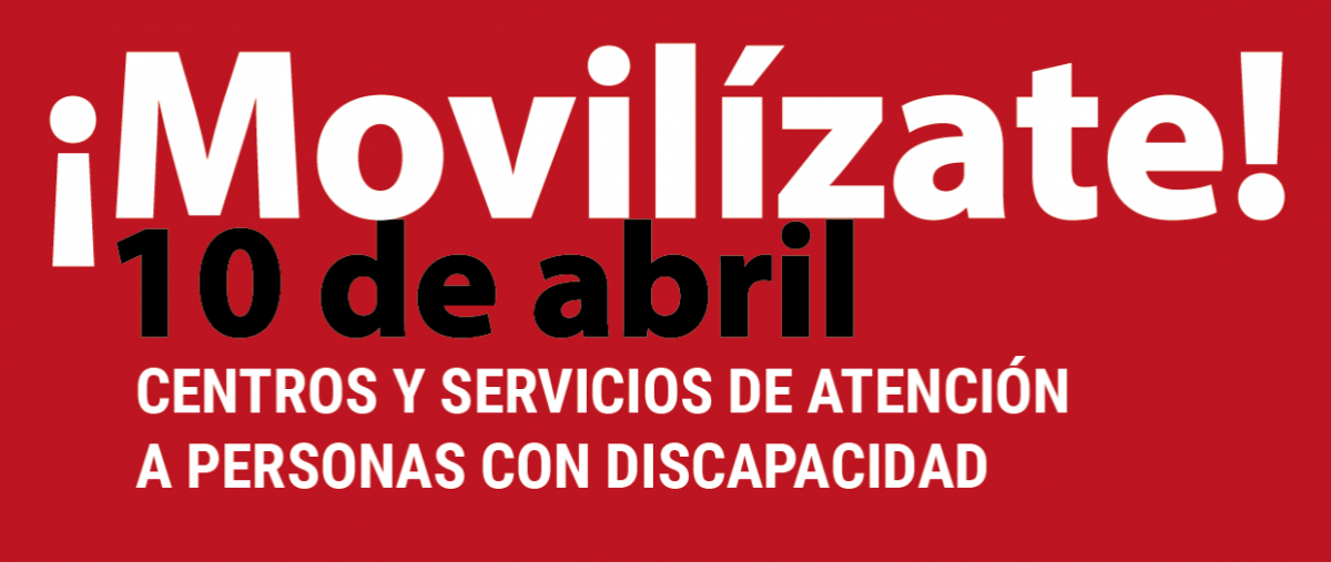 Movilizaciones sector de Discapacidad.